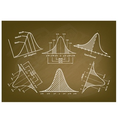 Normal Distribution Diagram or Bell Curve Charts vector image
