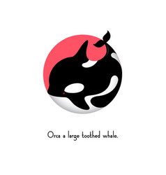orca whale ocean sea t shirt graphics vector image