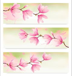Three Spring banners with blossom brunch of pink vector image