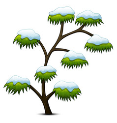 tree covered snow isolated on white background vector image