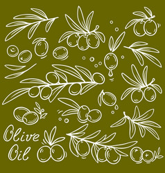 set of graphic olive branches vector image vector image