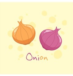Onion and Red Onion Vegetable vector image