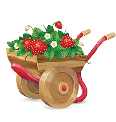 strawberry barrow vector image vector image