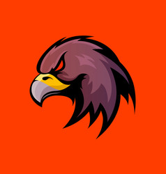 Furious eagle sport logo concept isolated vector
