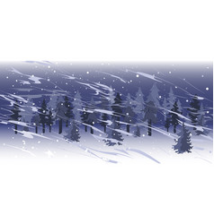 snowfall landscape in spruce tree forest vector image