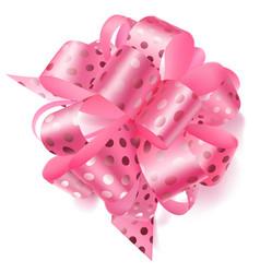 big bow made of ribbon in polka dots vector image