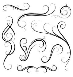 Set of calligraphic swirls vector image