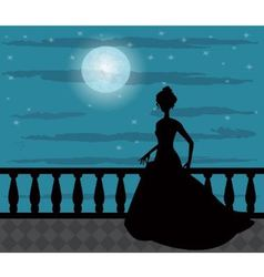 silhouette of a woman in the night vector image