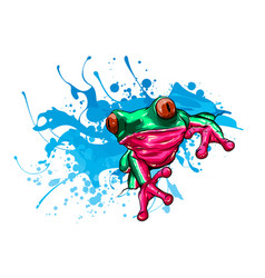 animal red frog with flower vector image