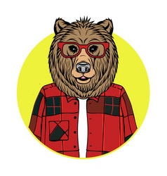Bear portrait vector