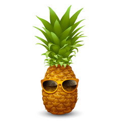 fresh ripe pineapple in sunglasses vector image