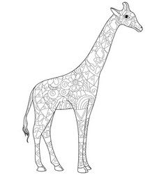 Giraffe coloring book for adults vector