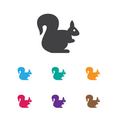of animal symbol on squirrel vector image