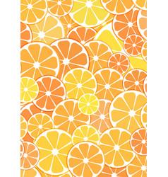 pattern background sliced halves of citrus vector image