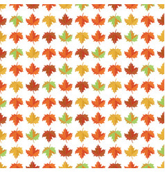 seamless pattern with yellow red and green maple vector image