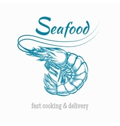 sketch shrimp seafood logo vector image