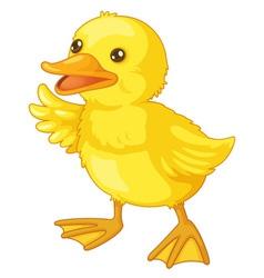 Cute cartoon duck vector