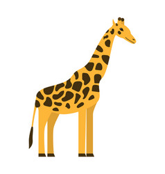 giraffe icon flat style vector image