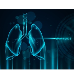 Human Lungs Background vector