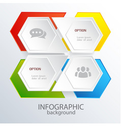 infographic web template vector image