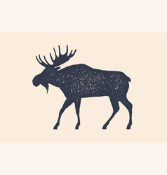 moose wild deer concept design farm animals vector image
