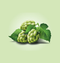 realistic beer green hop cones leaves with vector image