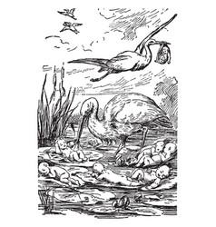 storks with babies vintage vector image