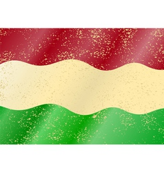Hungarian grunge flag vector image vector image