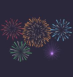 firework on night background anniversary vector image