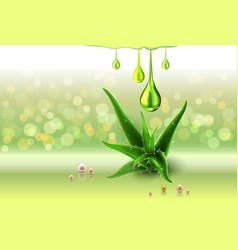 Aloe vera green perls oil drops green shiny vector