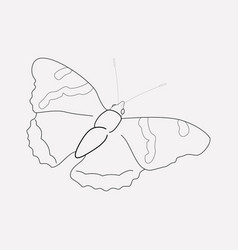 butterfly icon line element vector image