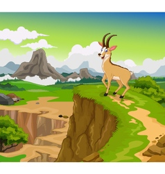 funny chamois cartoon with beauty cliff mountain l vector image