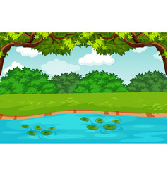 Green pond nature scene vector