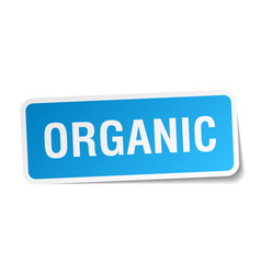 Organic blue square sticker isolated on white vector