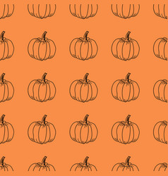 Pumpkin pattern contour graphics on an vector