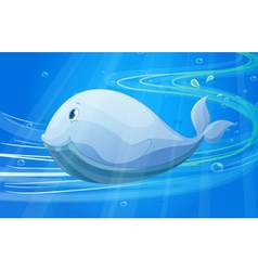 under water fish vector image