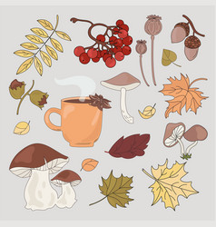Autumn forest fall season nature vector
