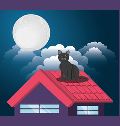 Cat under the light of the moon in the roof vector