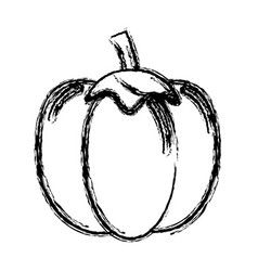 Contour health pepper vegetable icon vector