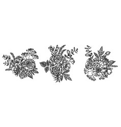Flower bouquet black and white roses anemone vector
