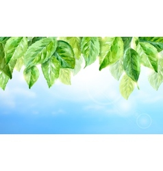 horizontal watercolor background of spring leaves vector image