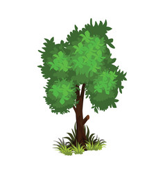 isometric cartoon bushy green tree - tileset map vector image