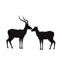 Silhouette pair of a standing impala africa mammal vector