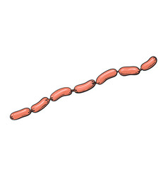 sketch sausages chain isolated vector image