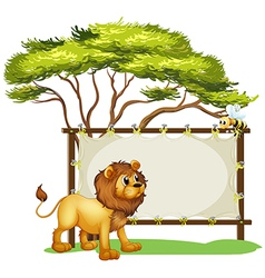 A lion looking at the bee vector image vector image
