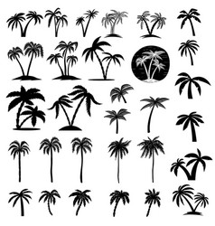Set of palm tree design element for logo label vector