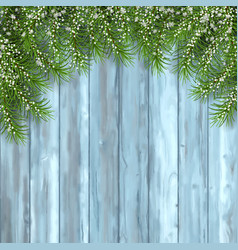 fir tree on wooden background vector image