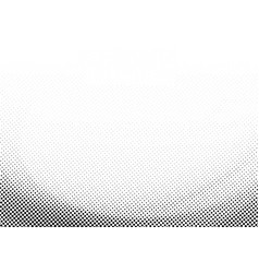 Abstract template black halftone elegant curve on vector