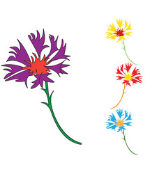 colored icon with wildflowers vector image