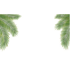 Copyspace template with palm leaves vector